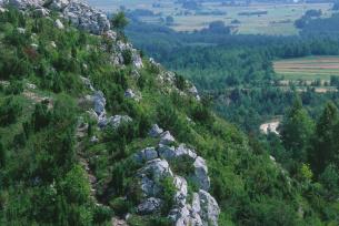 Rezerwat Góra Miedzianka