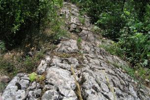 Rowki krasowe w rezerwacie Góra Zelejowa k. Chęcin