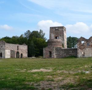 Ruiny Huty Józef w Samsonowie